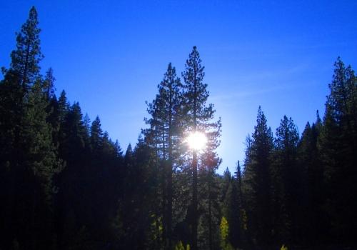 Near Tahoe